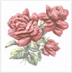 Декор Kerama Marazzi Оранжерея Розы TFA012 9.9х9.9