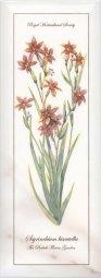 Декор Kerama Marazzi Ноттингем Цветы NT\A88\15005 15х40