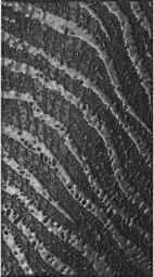 Декор Italon Skin Black jungle 25x45