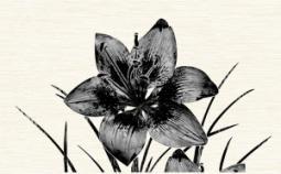 Декор Нефрит-керамика Piano 04-01-1-09-03-04-081-1 40x25 Серый