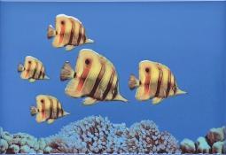 Декор Atem Mono  fish 3 27,5x40