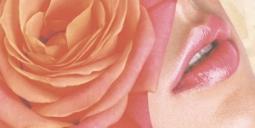 Декор Нефрит-керамика Мэри 07-00-5-10-00-41-204 50x25 Розовый